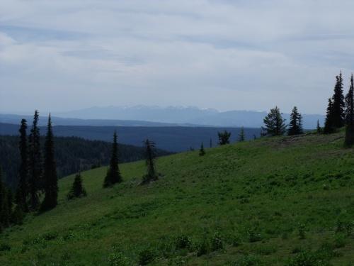 View from Beaver Ridge
