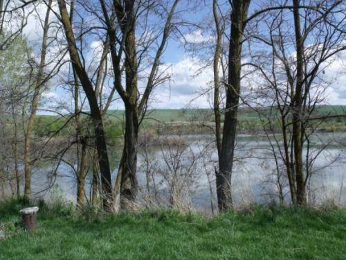 Bennington Lake 2012